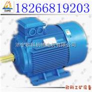 YB2矿用电动机 多规格防爆电机