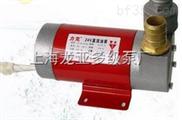 12v電動加油泵