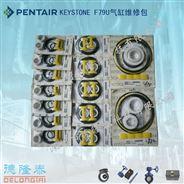 供應大量現貨TYCO KEYSTONE F79U氣缸維修包