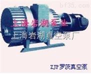 ZJP型羅茨式真空泵系列