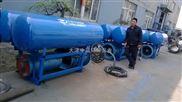 浮船式潜水泵
