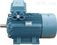 高压隔爆型三相异步电动机