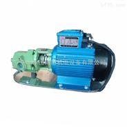 WCB系列手提式齿轮油泵 直联式润滑油泵