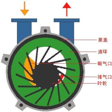 水环真空泵及压缩机工作原理图