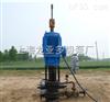 螺杆式油泵